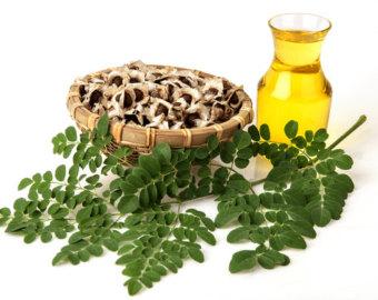 graines moringa santé huile