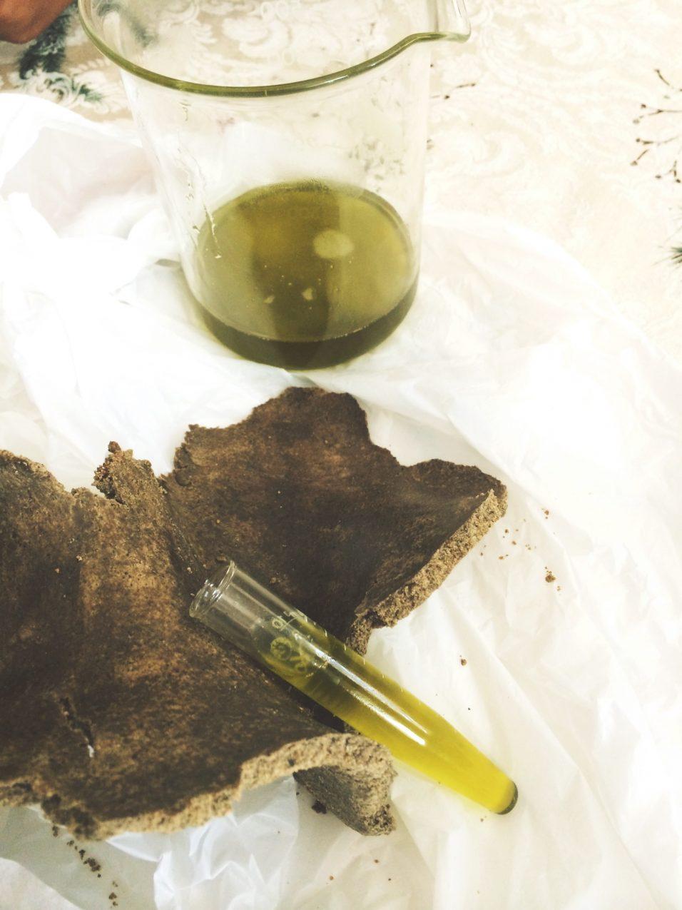 Bienfaits de l'huile de moringa