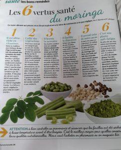 Vertus santé du moringa